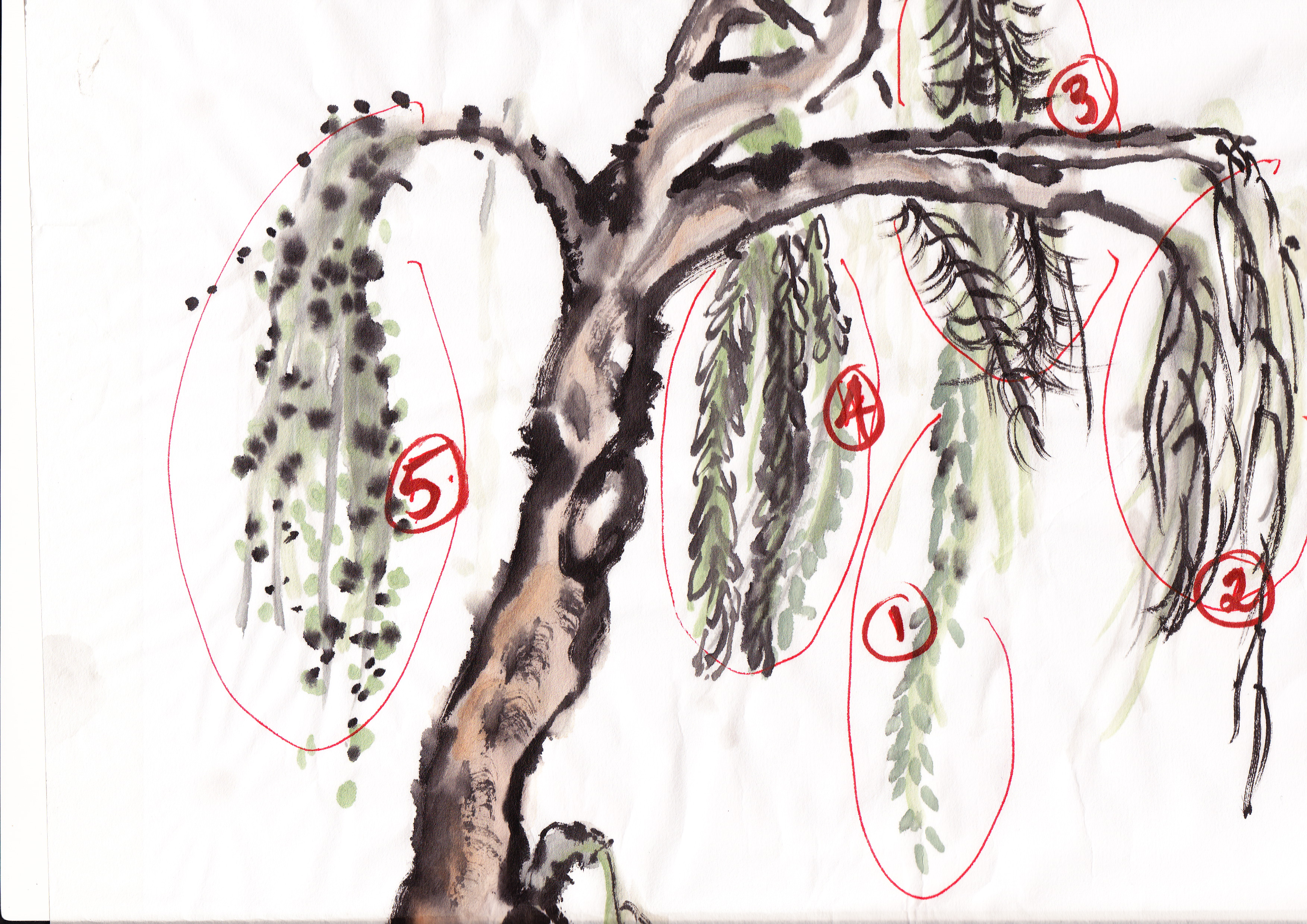 an analysis of the painting of a tree Salvador dali (1929 - 1941) analysis of art out of which a cypress tree grows the painting currently hangs in the salvador dali museum in st petersburg.