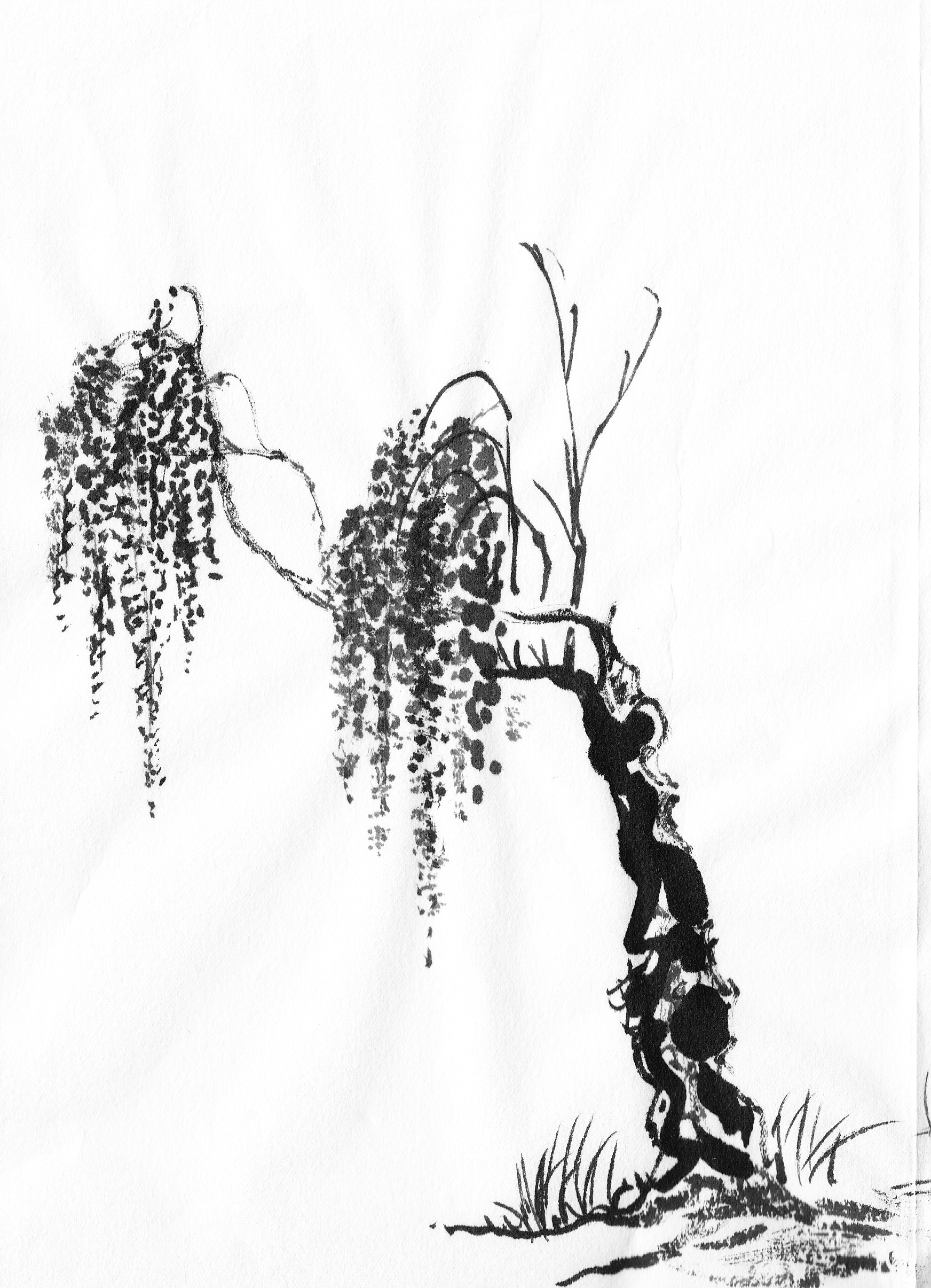 specific trees painting willow followmybrushmarks