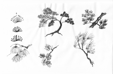 The half-wheel needle cluster is the most common one in traditional Chines Brush Painting.
