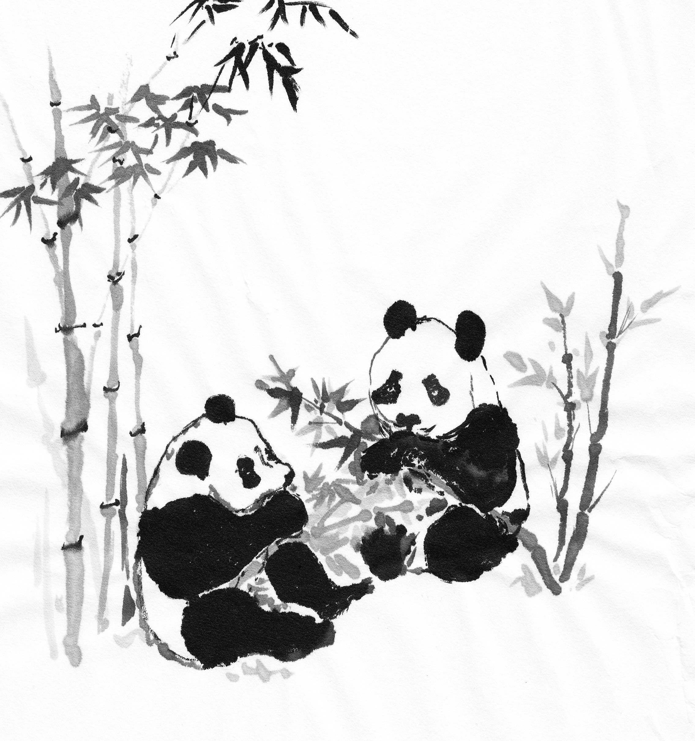 Download Wallpaper Home Screen Panda - pandasmunchjpg  Perfect Image Reference_457442.jpg