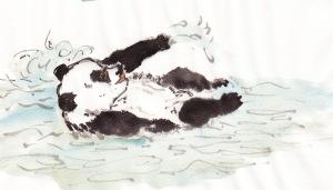 PandaSwims