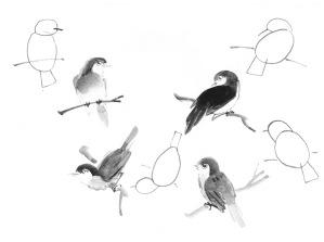 BirdShapes_0001