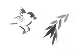 BrownBirds