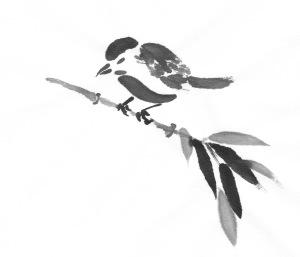 BrownBirds_0001