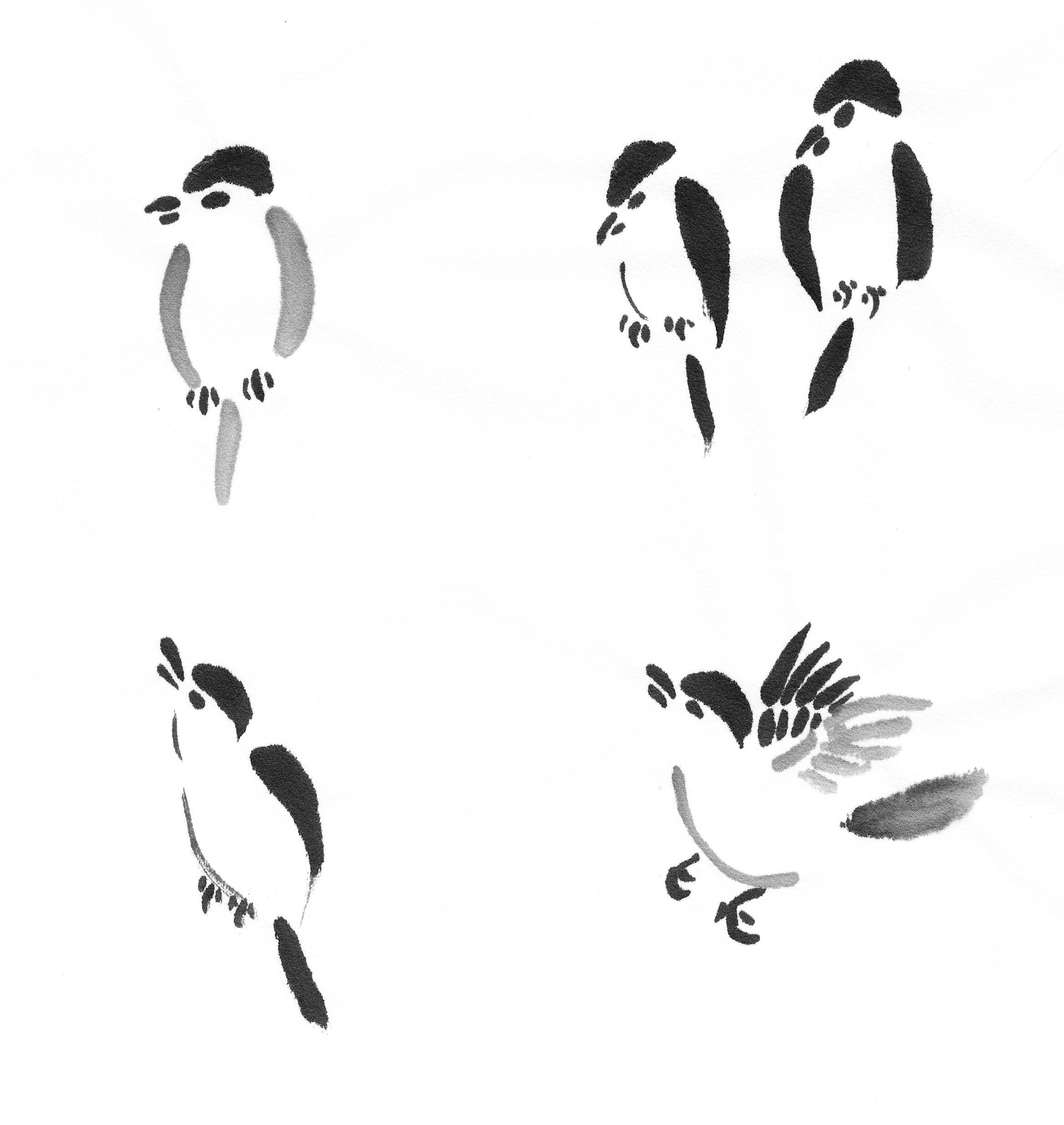 Little Brown Birds Followmybrushmarks