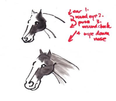 HorseHeadSteps3