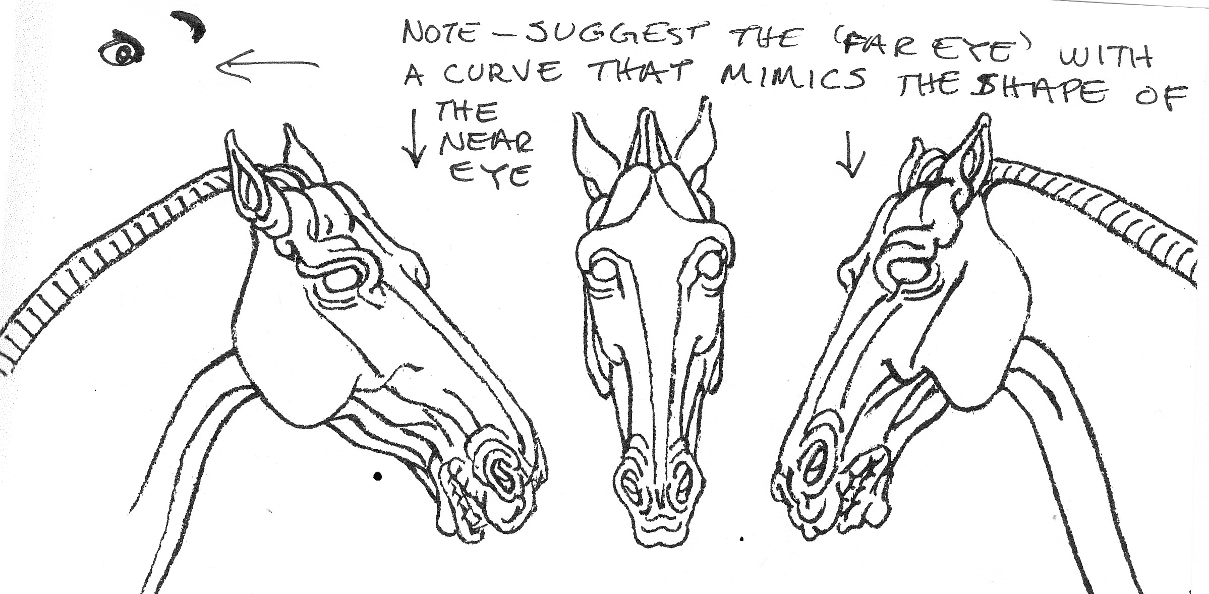 how to draw an appaloosa horse facing left draw