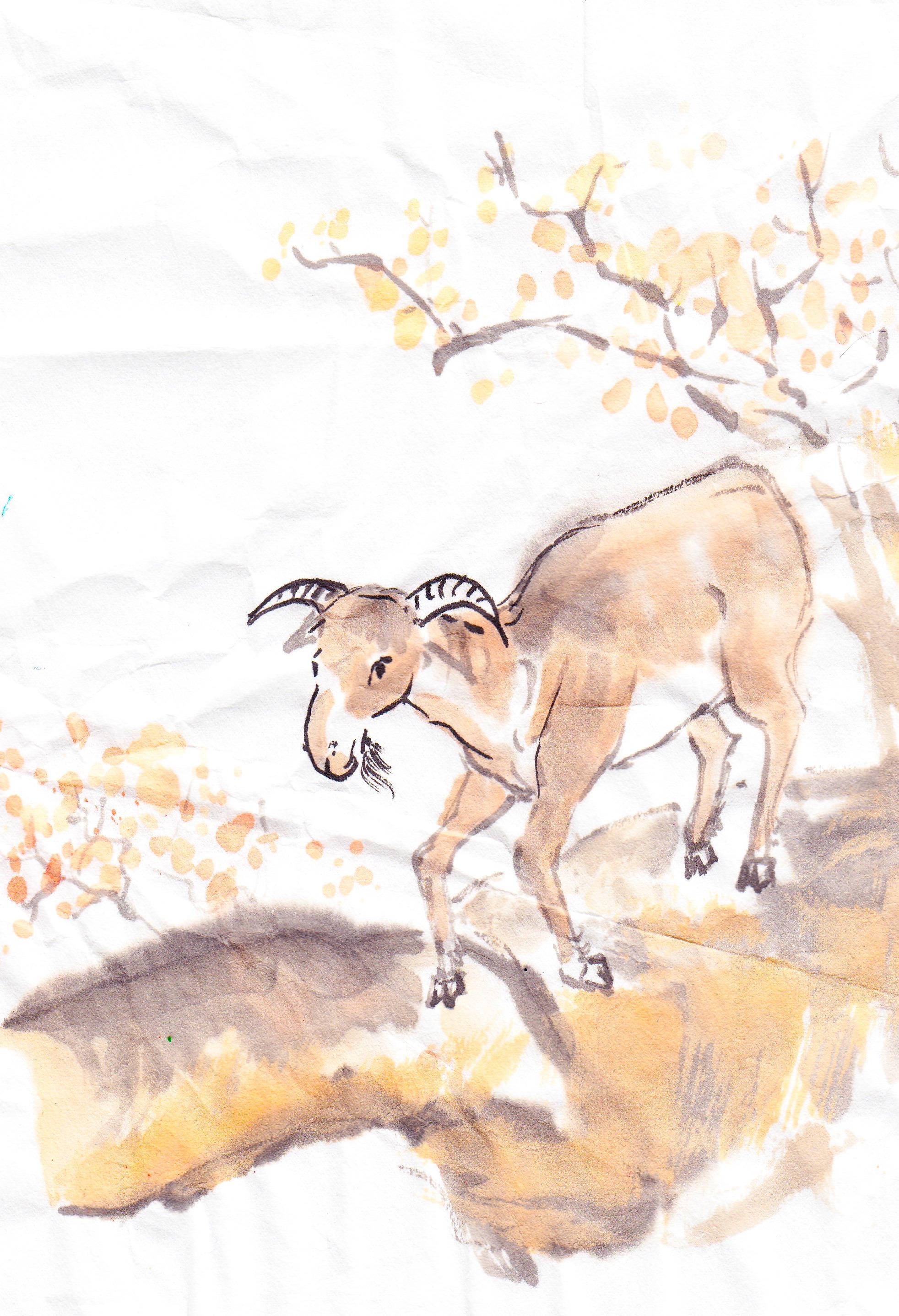 Ram goat sheepall the same followmybrushmarks goatyear buycottarizona