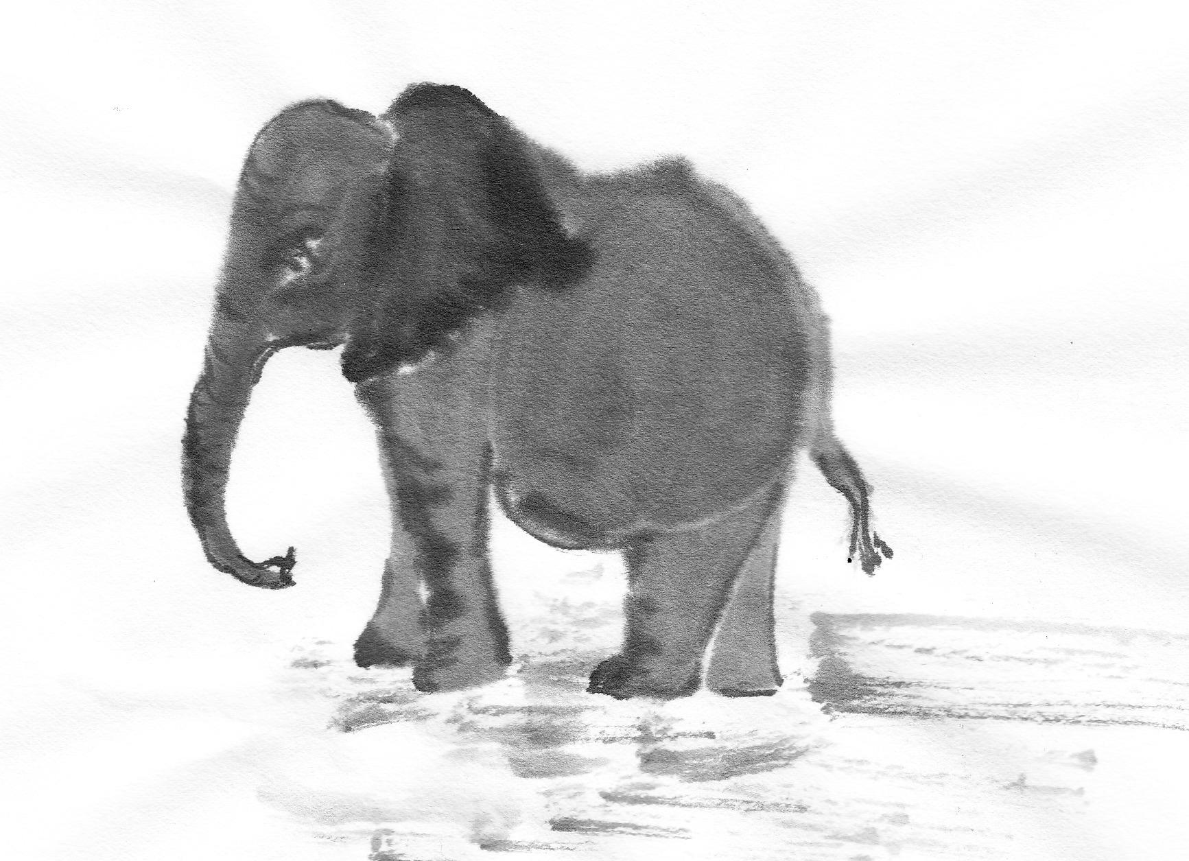 The return of ernest the elephant followmybrushmarks elephantsst0003 biocorpaavc Image collections