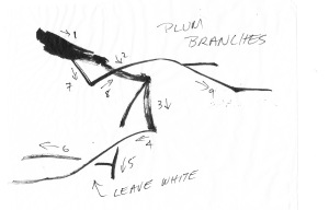 PBbranches