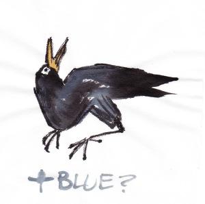 birdfeathersBLUjpg