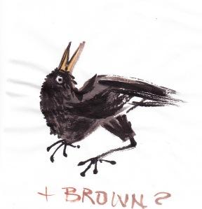 birdfeathersBR