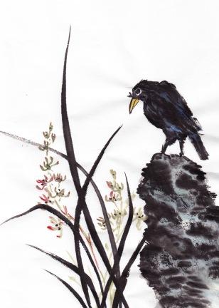 birdfeathersORC