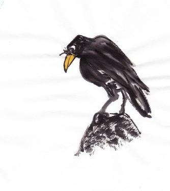 birdfeathersRock