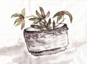 orchidbowl