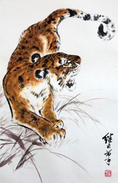 Tiger&curl