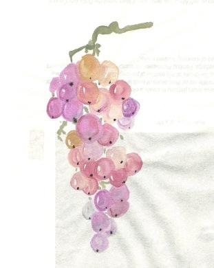 grapebunch