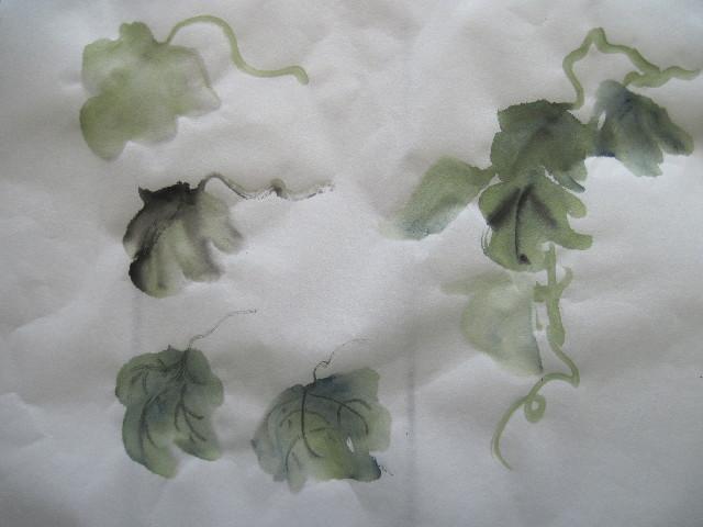 leavesgrape