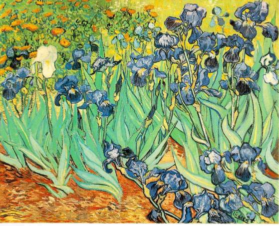 van-gogh-irises-1889-getty-museum
