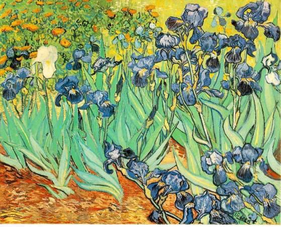 van-gogh-irises-1889-getty-museum