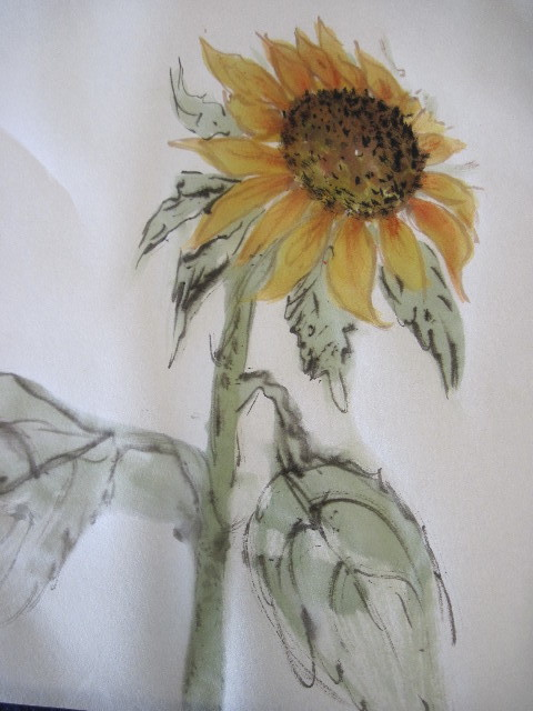 myfirstsunflower