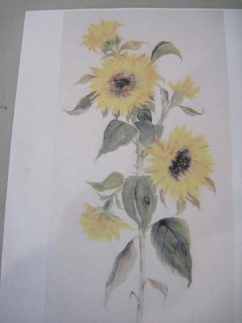 sunflowerdl1