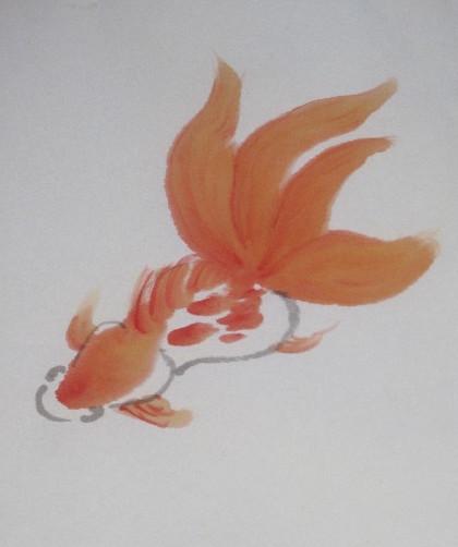 fgoldfish2