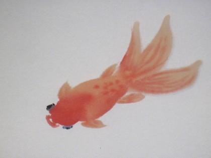 jdgoldfish2