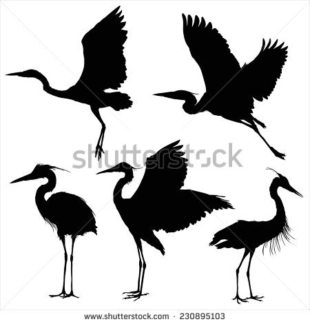 shutterstock-heron-royfree