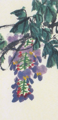 WisteriaJPdetail