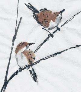 SparrowStudyYB