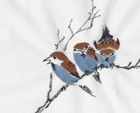 SparrowStudyYB3