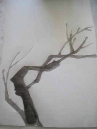 BranchMeth31