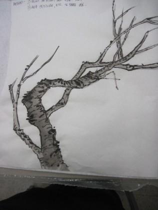 BranchMeth32