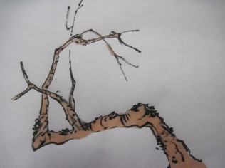 BranchMeth52