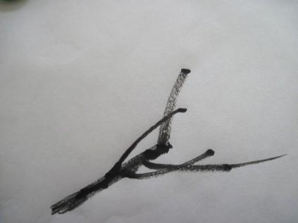 BranchPat1