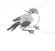 ChowBirdC2