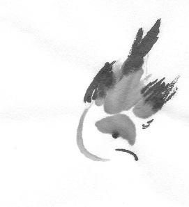 ChowBirdD 1