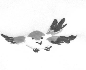 ChowBirdD 2