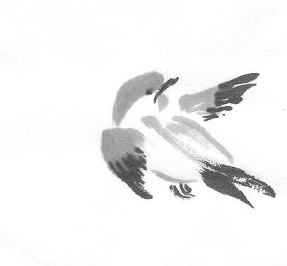 ChowBirdD 5