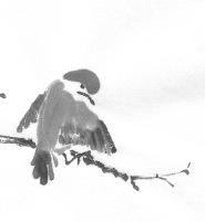 ChowBirdF 1