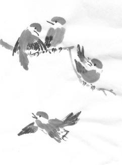 ChowBirdF 1&2&3&4