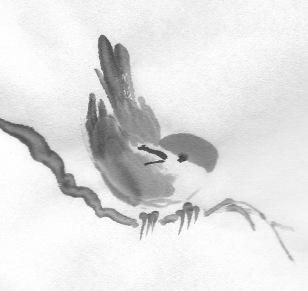 ChowBirdF 3