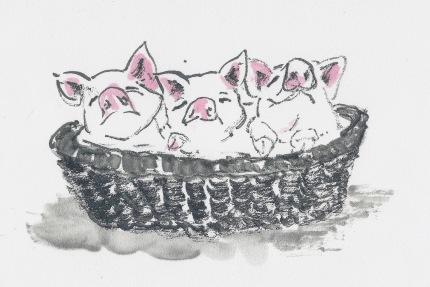 PigBasketBM