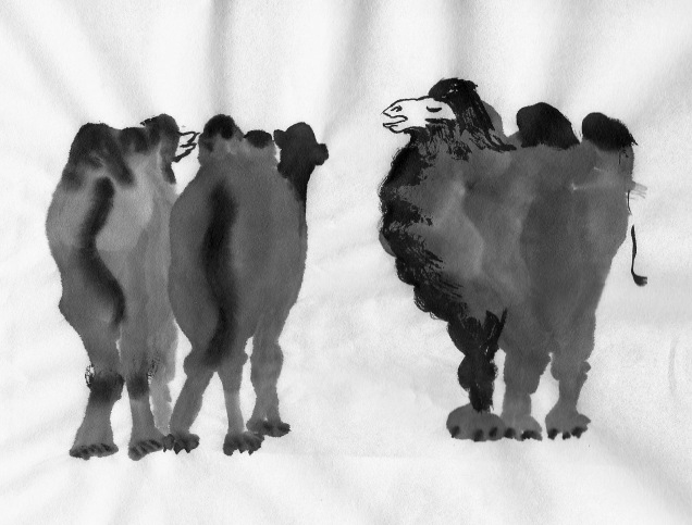 Spitting image, the Bactrian Camel | followmybrushmarks